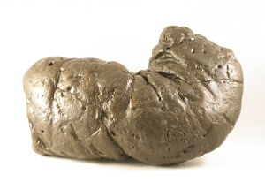 precious_the_coprolite_courtesy_of_the_poozeum