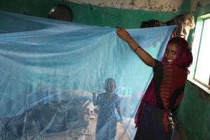 Distributing_Zanzira_bed_nets_in_Amhara_State_(41559680760)