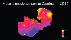 global-fund_2019_inline-7_malaria-incidence-rate_800x450_v1